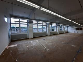 Einzigartiges Atelier, Büro, Gewerbe inkl. Parklatz (3)