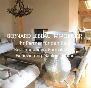 Splendide Attique / Stunning Penthouse (2)