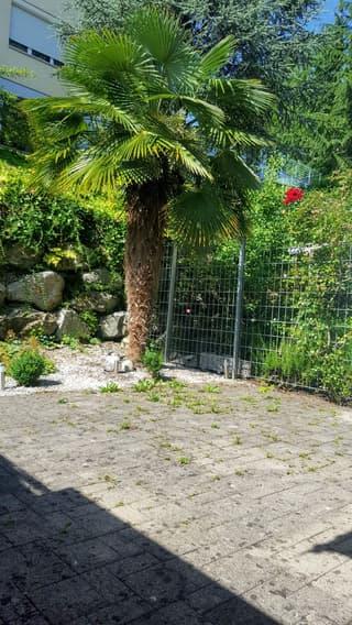 Moderne 3½-Zi Maisonette Eigentumswohnung mit Garten, See- und Weitsicht (3)
