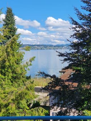 Moderne 3½-Zi Maisonette Eigentumswohnung mit Garten, See- und Weitsicht (4)