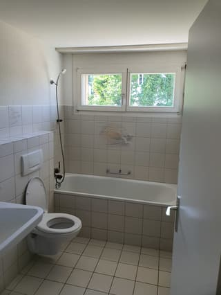 Grosse 4 1/2-Zimmer-Wohnung im 2. OG (3)