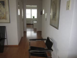 Lovely 3.5 apartment for rent (3)