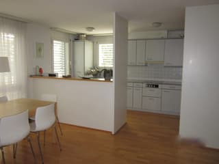 Lovely 3.5 apartment for rent (4)