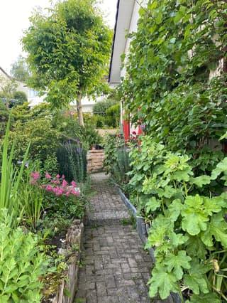 5 1/2 Zi-Doppeleinfamilienhaus mit Garten, Gartensitzplatz und Biotop (3)