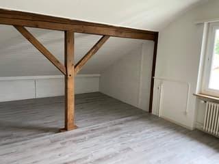 1 Zimmer Dachwohnung (3)