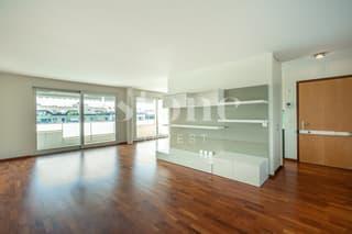 A deux pas du Vieux Carouge: Superbe appartement traversant avec box! (2)