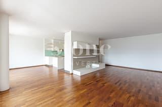 A deux pas du Vieux Carouge: Superbe appartement traversant avec box! (4)