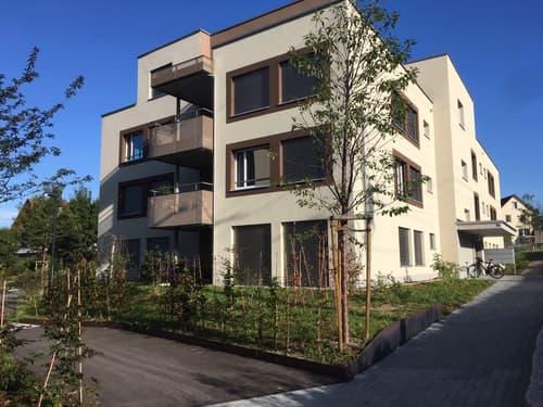 Wohnung Haus Mieten In Hedingen Homegate Ch