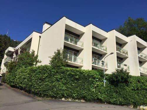 Wohnung Mieten In 8045 Zurich Homegate Ch