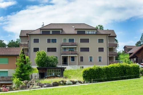 Schöne 3-Zimmer Wohnung in Neu St.Johann