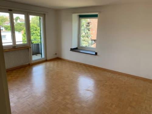 Wohnung Mieten In 8203 Schaffhausen Homegate Ch