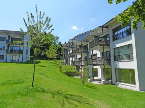 Wohnung Mieten In 8038 Zurich Homegate Ch