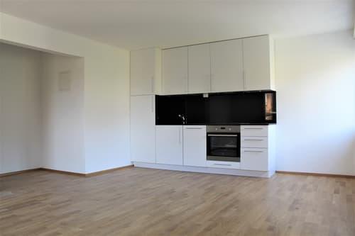 1.5 Zimmer Wohnung (Erstvermietung) (1)