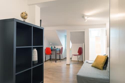 Grosszügiges und modern eingerichtetes Studio in Luzerner Altstadt