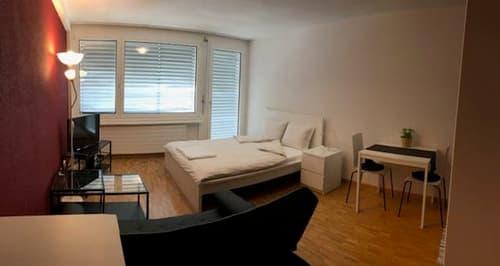 Studios, neu möbliert, im Zentrum von Baden, Bruggerstr., Fluhmattstr. und Grendelstr.