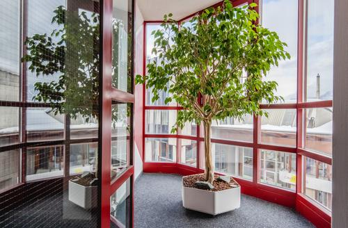 Attraktive Büroräumlichkeiten im 2. OG ? Ihre neue Arbeitsumgebung! (1)