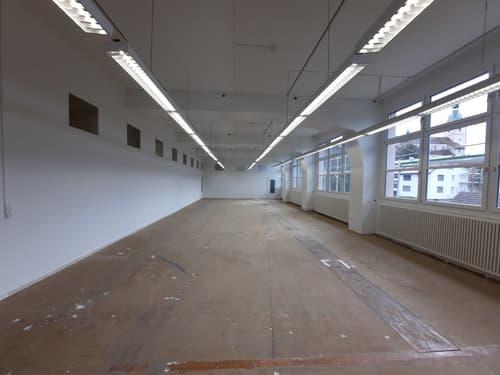 Einzigartiges Atelier, Büro, Gewerbe inkl. Parklatz (1)