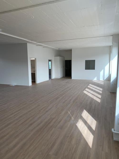 ARBEITEN IN 200 m2, neu renoviert, grosse Fenster