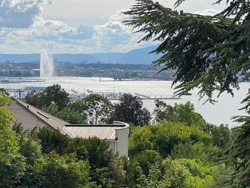 COLOGNY - Magnifique parcelle avec vue lac