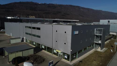 Produktion, Verkauf und Logistik an einem Standort