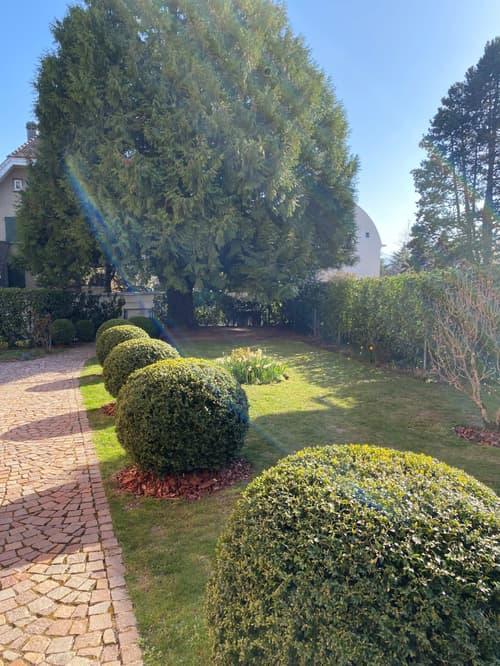 Pully - La Rosiaz, charmant appartement de 3.5 pièces avec jardin
