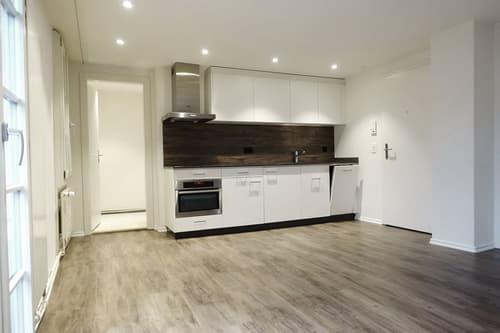 Wunderschöne 2-Zimmer-Wohnung in 6015 Luzern zu vermieten