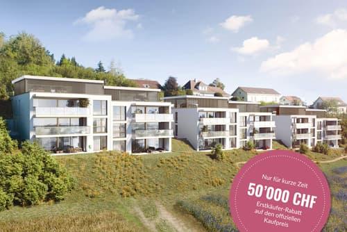 Neubauprojekt Alpenblick, Niederwangen - Ihr Zuhause mit Fernsicht