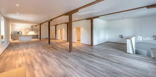 Neu erstellte 3.5 Zi. (155m2) Loftwohnung & 500 m2 Nutzfl.