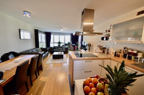 Spacieux appartement avec beau balcon