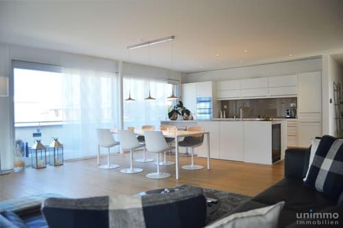 Loft-Ähnliche 3.5-4.5 Zimmer Attika Wohnung an zentraler Lage