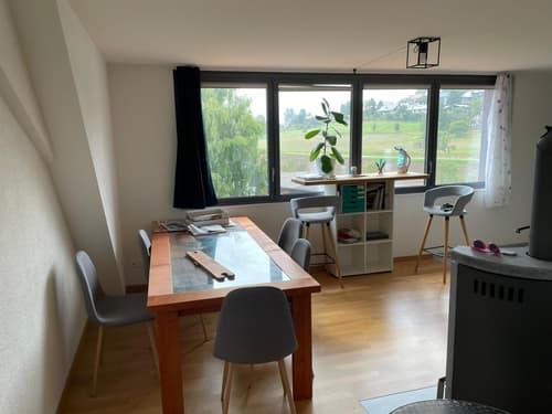 Ruhige Dachwohnung mit Weitsicht