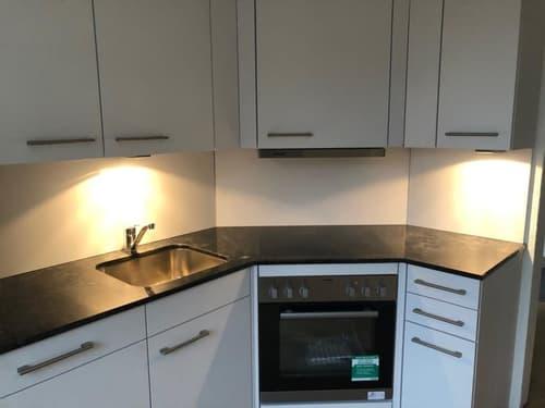 renovierte Maisonette-Wohnung im Herzen von Bichelsee (1)