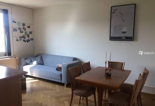 2-Zimmer-Wohnung Fischermätteli