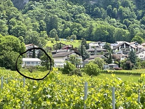 Zweifamilienhaus an Südlage in der Bündner Herrschaft in Jenins (1)
