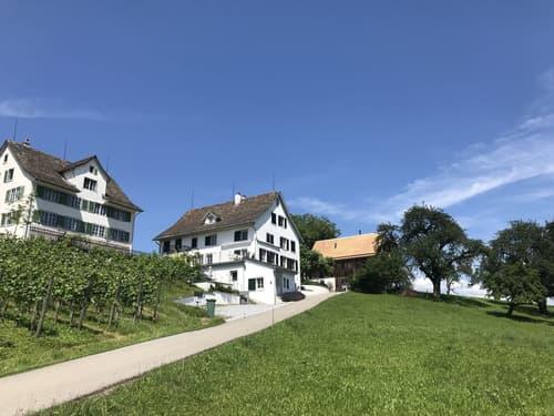 Modernes Wohnen in 5.5-Zimmer-Hausteil mit Blick auf den Zürichsee