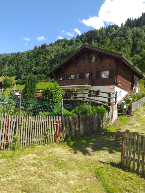 Cava great again, ruhige Lage (5 Zimmer, 2 Bäder, 2 Küchen, möbliert) - Nähe Disentis/Mustér (1)