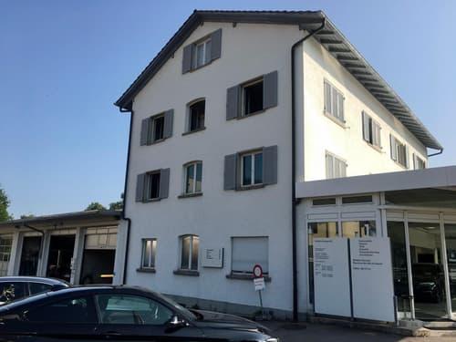 1 Zimmer Dachwohnung (1)