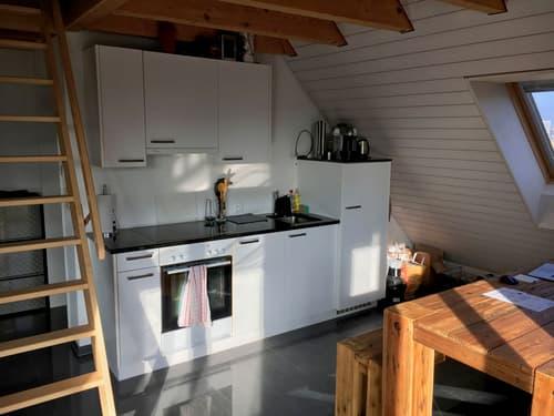 Schöne 1.5 - Zimmer Wohnung im Zentrum von Oerlikon (1)