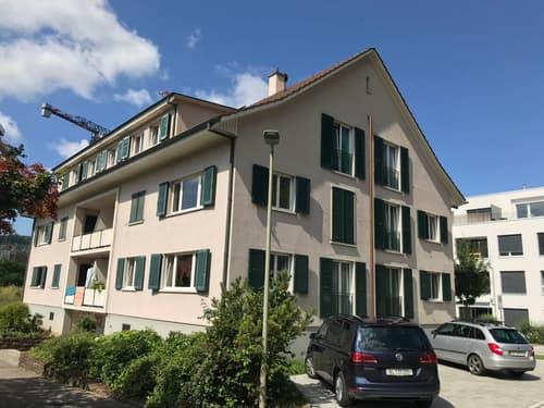 Attraktive Anlageliegenschaft mit 12 Wohnungen und 4 Garagen