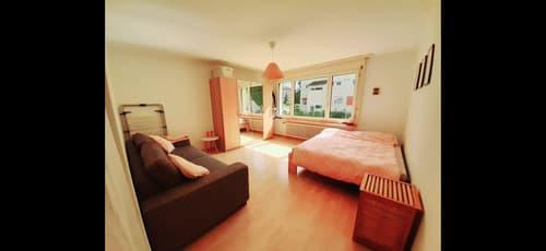 Zentale 1.5 Zimmerwohnung, befristet zur Untermiete