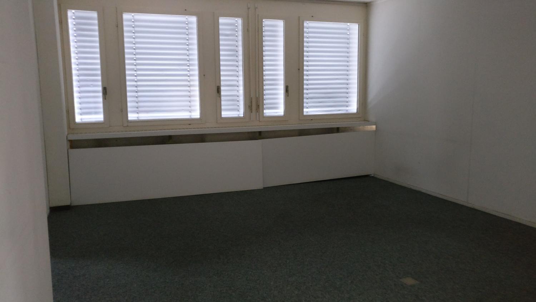 wohnung aussicht oberwil lieli - Wohnungen in Oberwil-Lieli