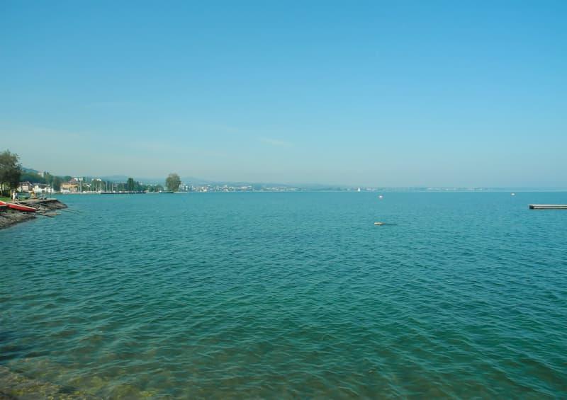 Staad am schönen Bodensee!