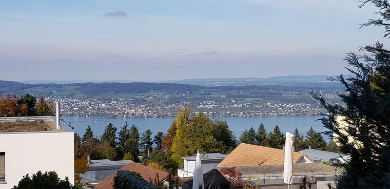 Sicht auf den Zürichsee