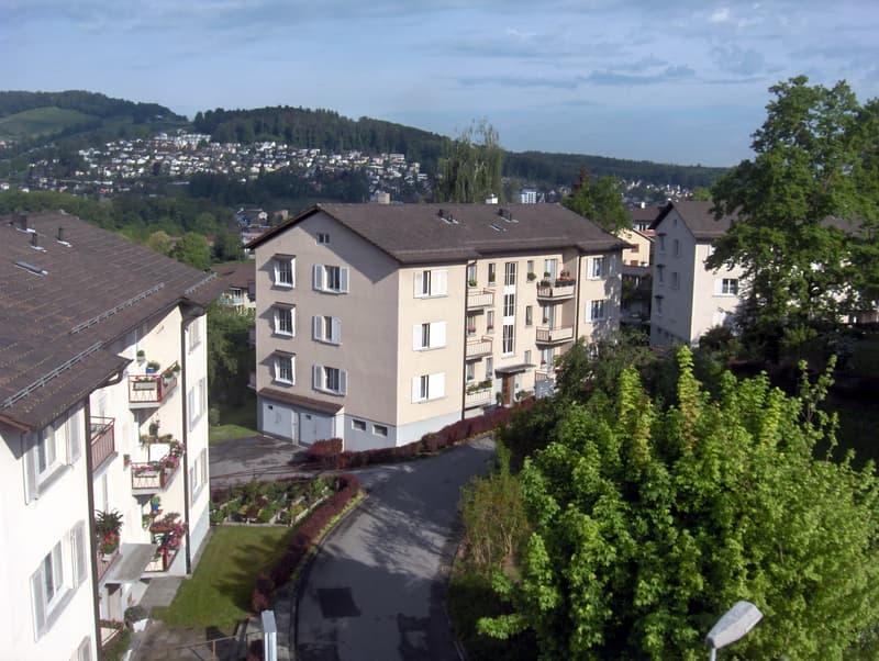 3-Zimmer-Wohnung nahe Stadtgrenze Luzern!