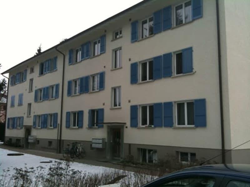 3-Zimmerwohnung, 1. Stock links