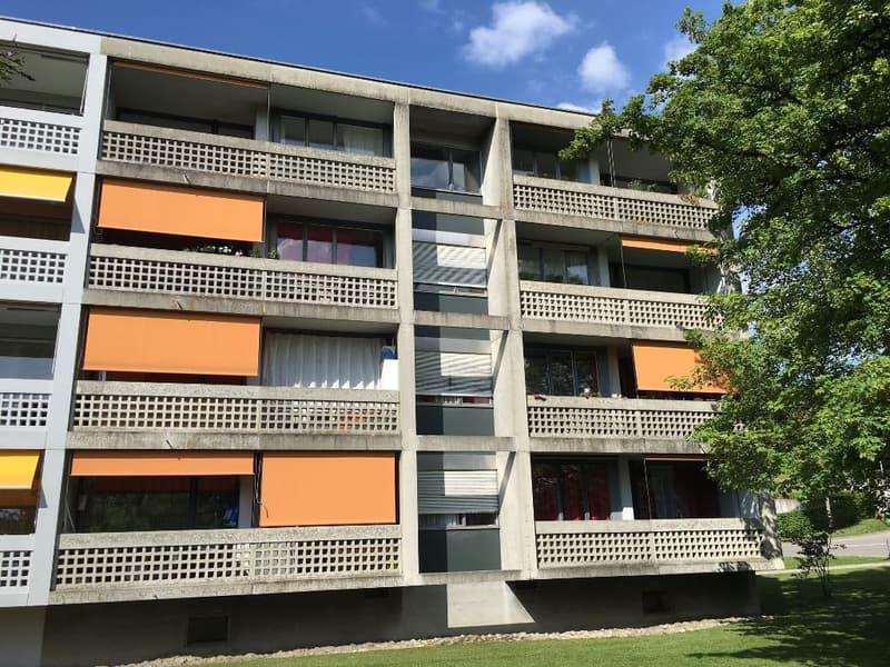 3 1/2-Zimmerwohnung, 2. Stock rechts