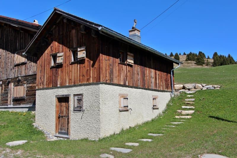 3.5 Zimmer Maiensäss in Radons mitten im Ski- / Wandergebiet Savognin