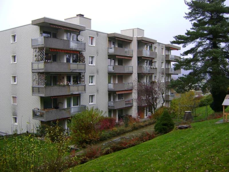 Schöne und helle 3.5 Zimmerwohnung in Busswil zum vermieten