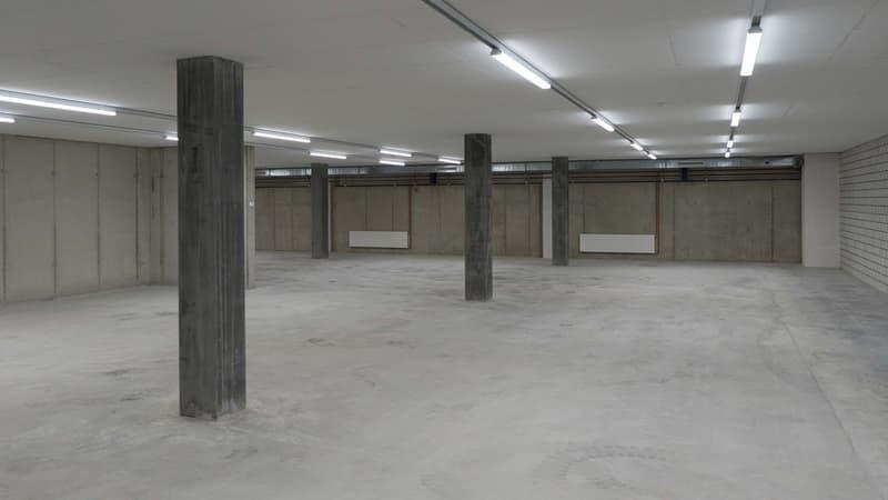 Lagerfläche 174 m² (Erdgeschoss) in Winterthur Töss direkt an der A1