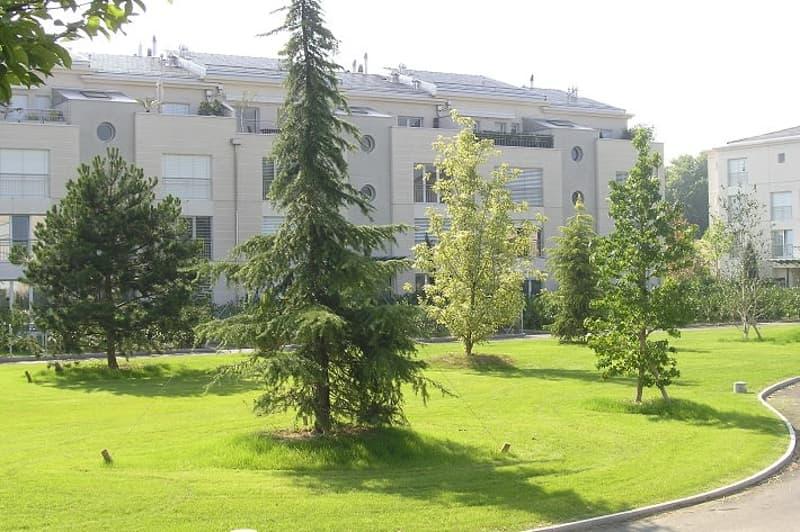 Superbe appartement de haut standing de 5½ pièces au rez en duplex avec jardin et cheminée